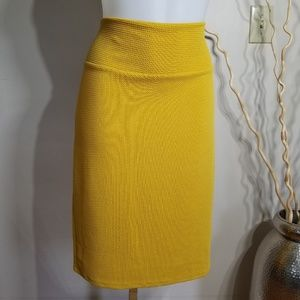 Lularoe Cassie Pencil Skirt Sz M